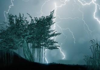 Richtiges Verhalten bei Blitz und Donner